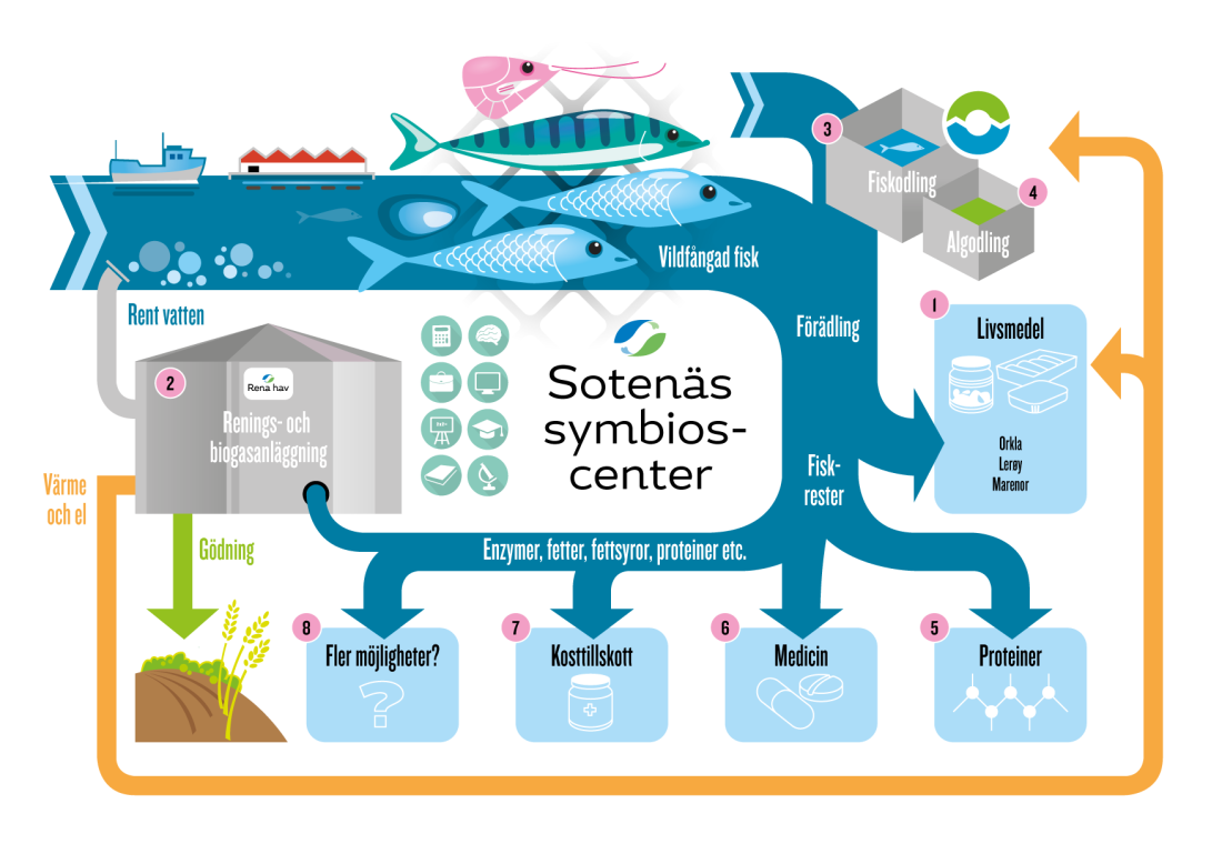 Symbioscenter_infografik-01